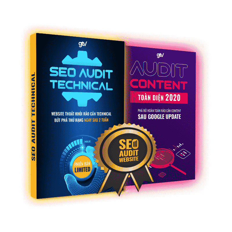 Combo SEO Audit website