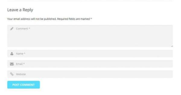 chèn backlink blog comment