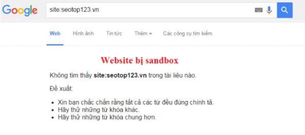 ví dụ website bị sandbox