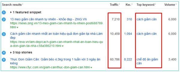 traffic là gì, traffic ước tính, cách xem traffic website