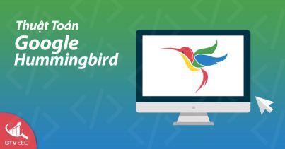 google hummingbird, thuật toán google hummingbird, google hummingbird là gì