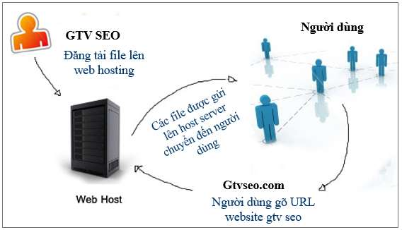 phan-biet-ten-mien-va-hosting