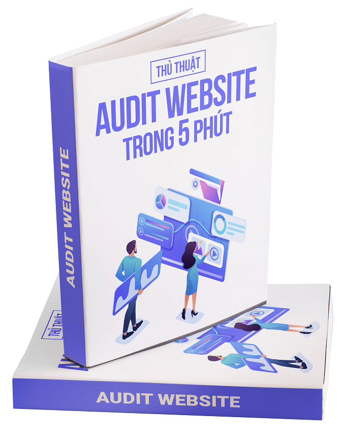 ebook seo audit website